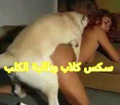 سكس كلاب وطالبة الكلب المحظوظ والكس الهايج بعنف